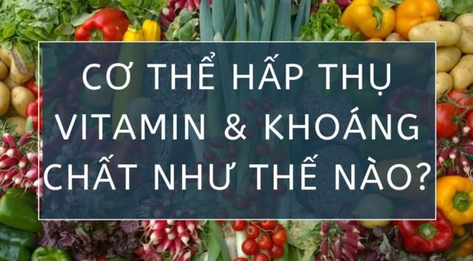 Làm thế nào để duy trì lượng vitamin và chất khoáng có trong thức ăn?